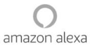 Service and Installation for Amazon Alexa